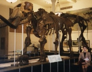 Una servidora asseguda al costat de l'esquelet d'un mamut a l'American Museum of Natural History de Nova York (foto del 1995)