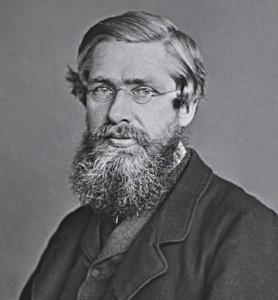 Alfred Russel Wallace (1823 – 1913), coautor de la teoria de l'evolució per selecció natural